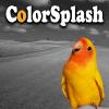 Splashscreen